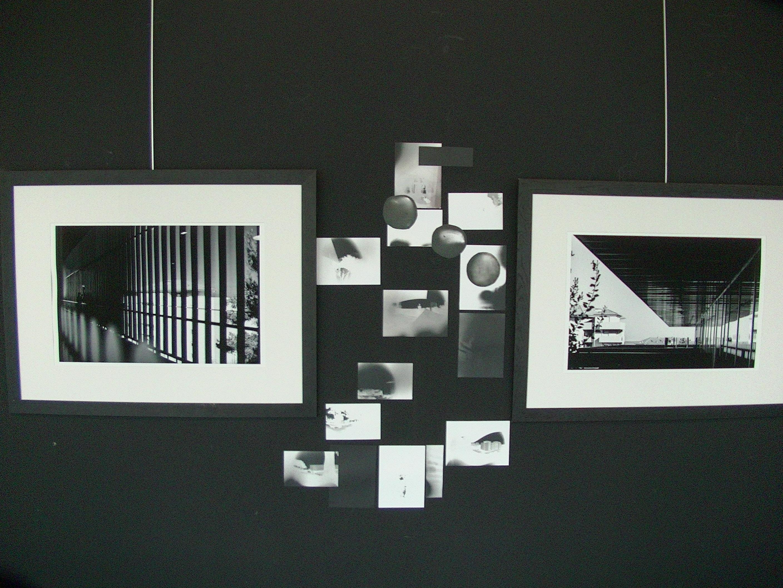 Bastia : Une expo visible sur … l'invisible !
