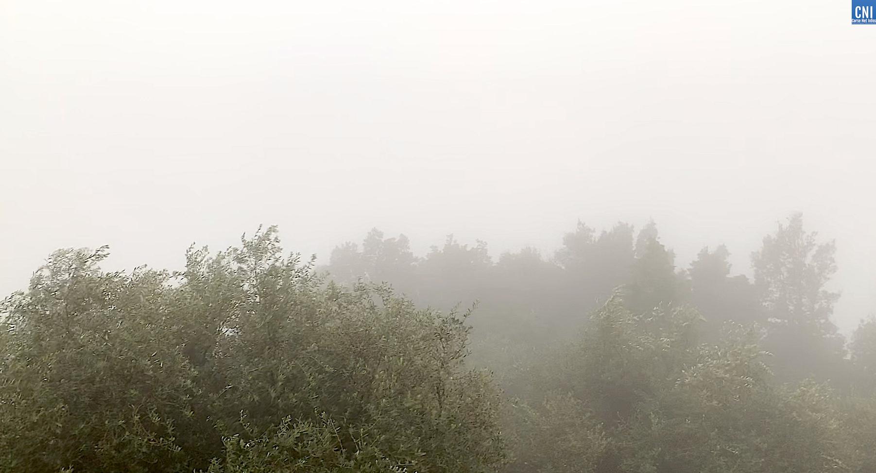 Le Cap Corse dans la brume