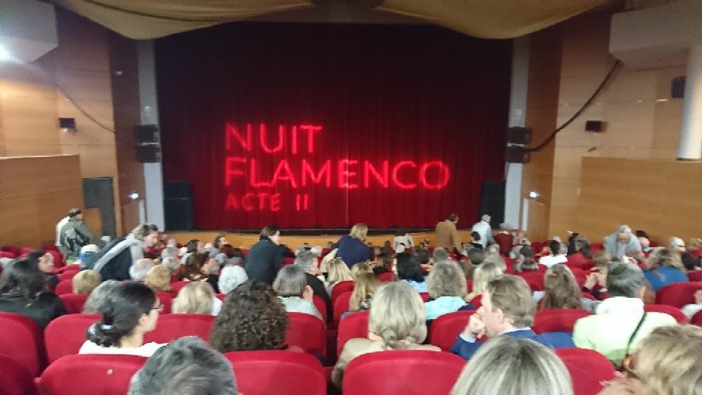 Nouveau succès pour la semaine de la danse à Porto-Vecchio