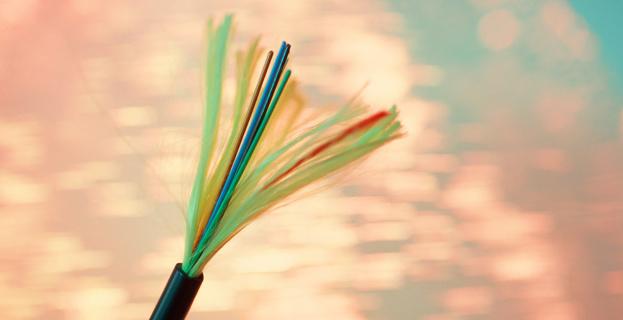 Il y a de la friture sur la fibre optique de Corse