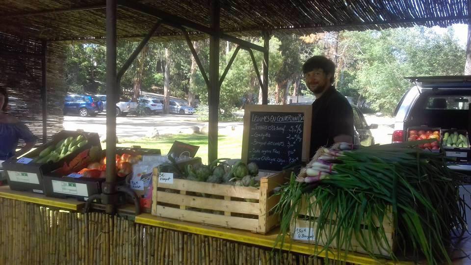 U Marcatu à Ghisonaccia :  Quand tourisme et agriculture choisissent d'être complémentaires