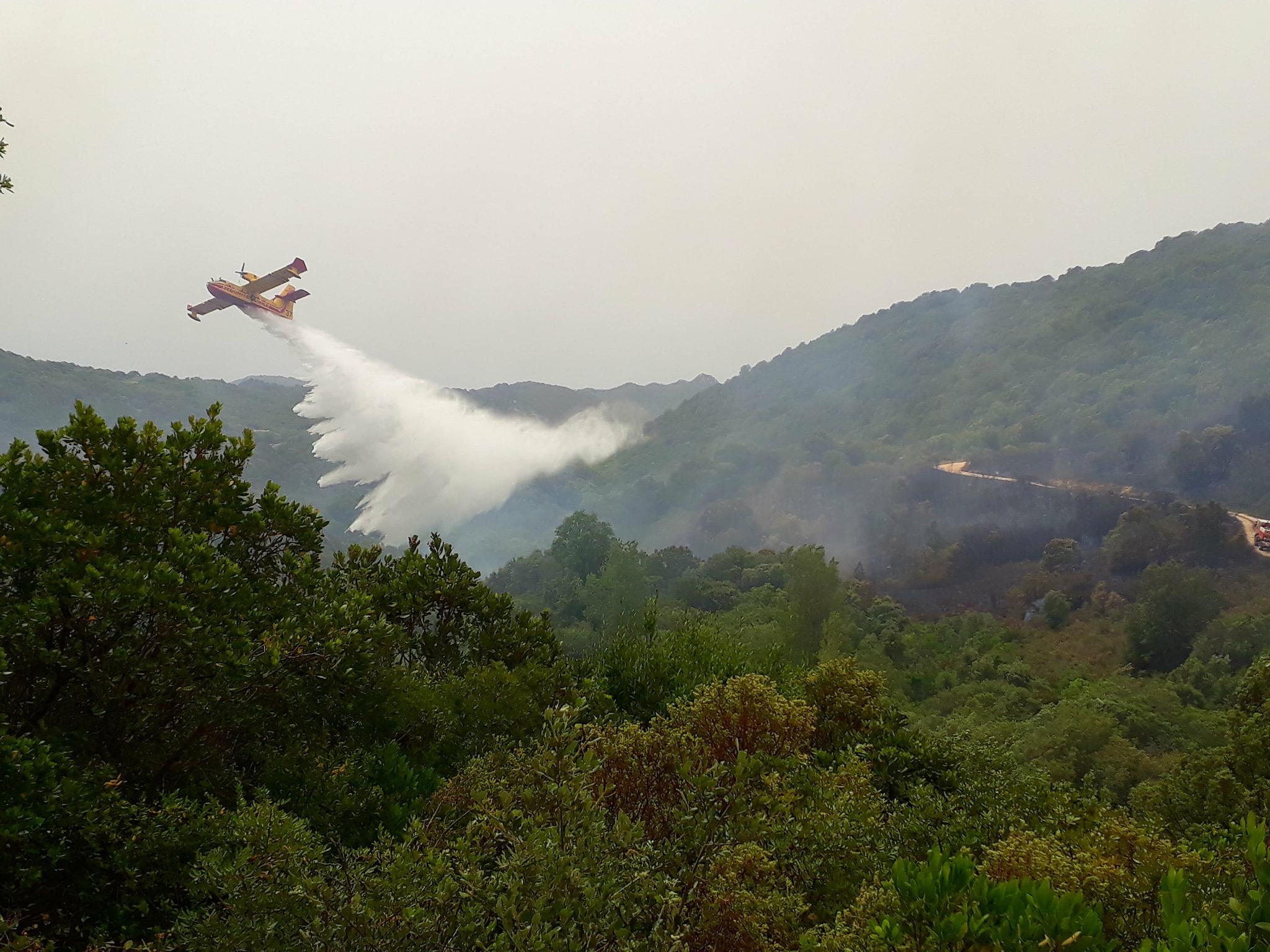 Le feu à proximité de l'hôpital de Sartene maîtrisé