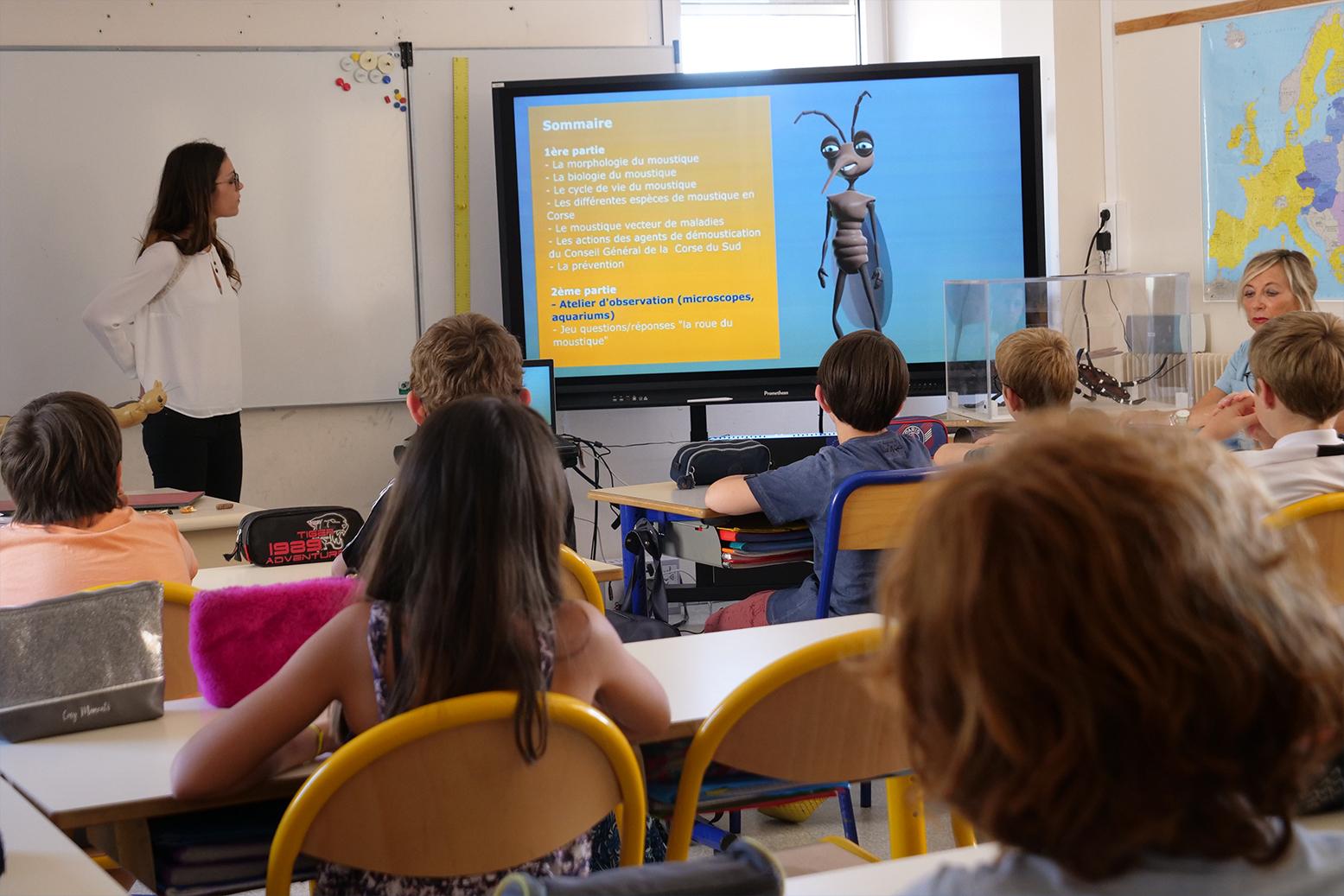 Ajaccio :  haro sur les moustiques ! Les élèves du primaire dans la prévention