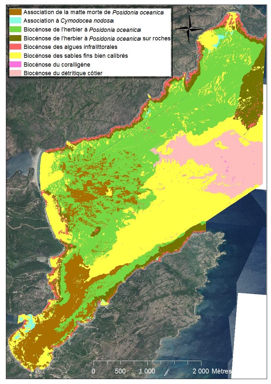 Golfe de Santa-Manza, en marron, les mattes mortes qui ne cessent de progresser  ©Université de Corse
