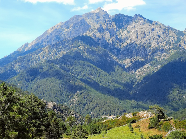 La photo du jour : Le Monte d'Oro, entre Vivario et Vizzavona