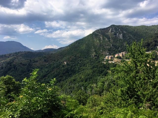 Mazzola, dans le Boziu (Nadège Sales-Marcantoni)