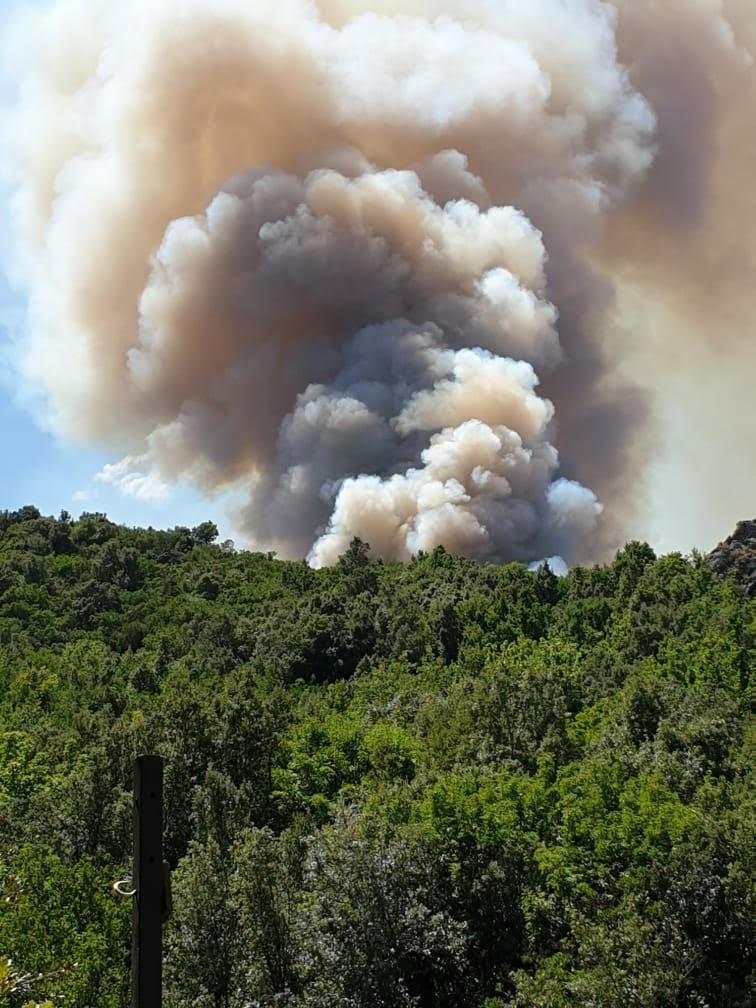 Le feu vu de Ponte-Novu (Photo Christophe Reis)