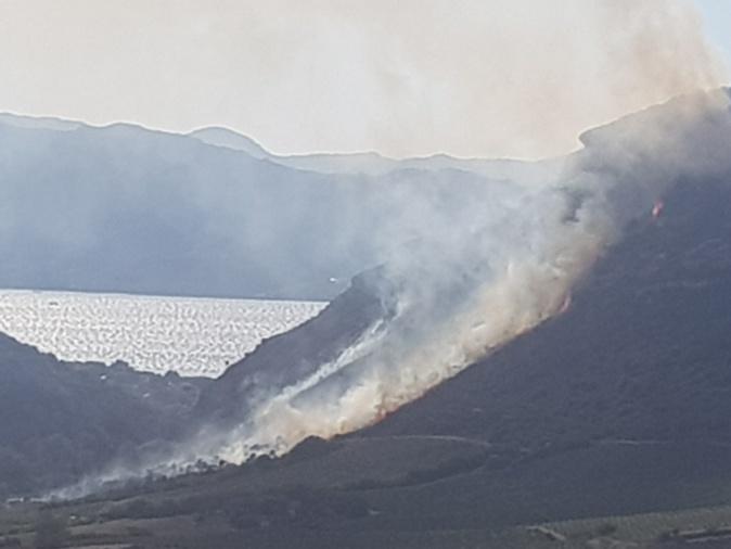 Patrimonio : Le feu a parcouru 6 hectares