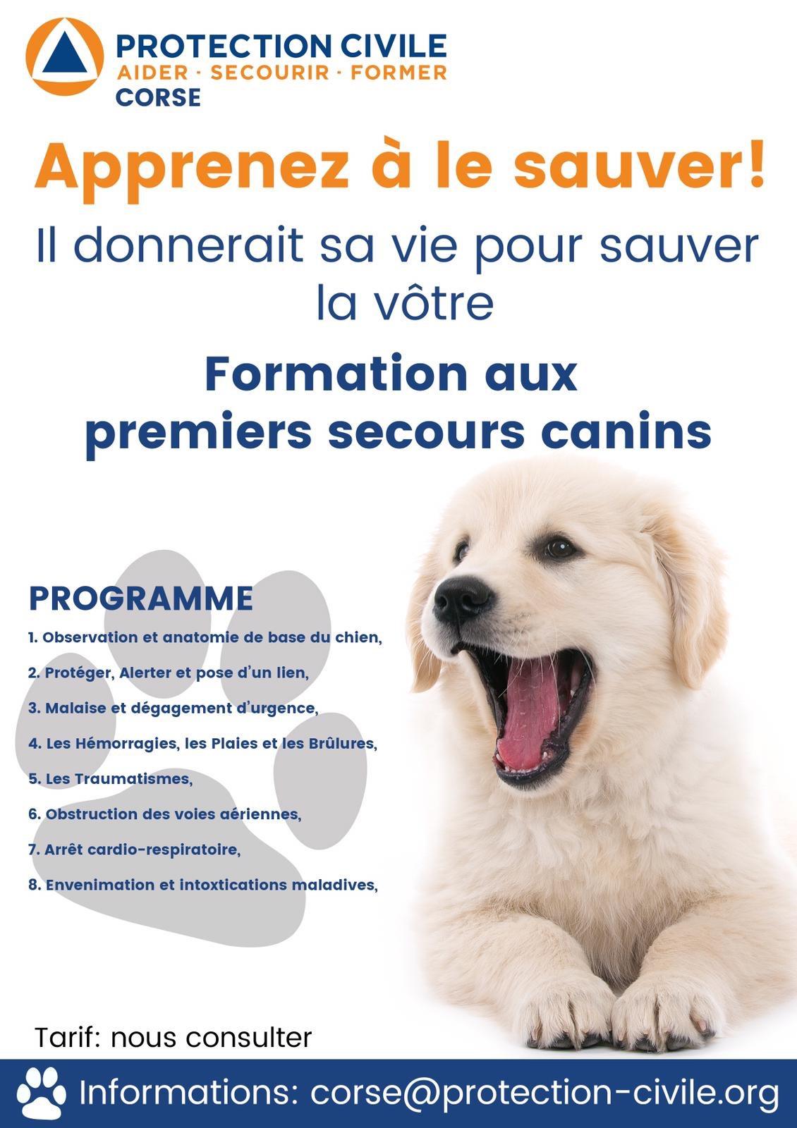 La protection civile de Corse organise une formation aux premiers secours canins