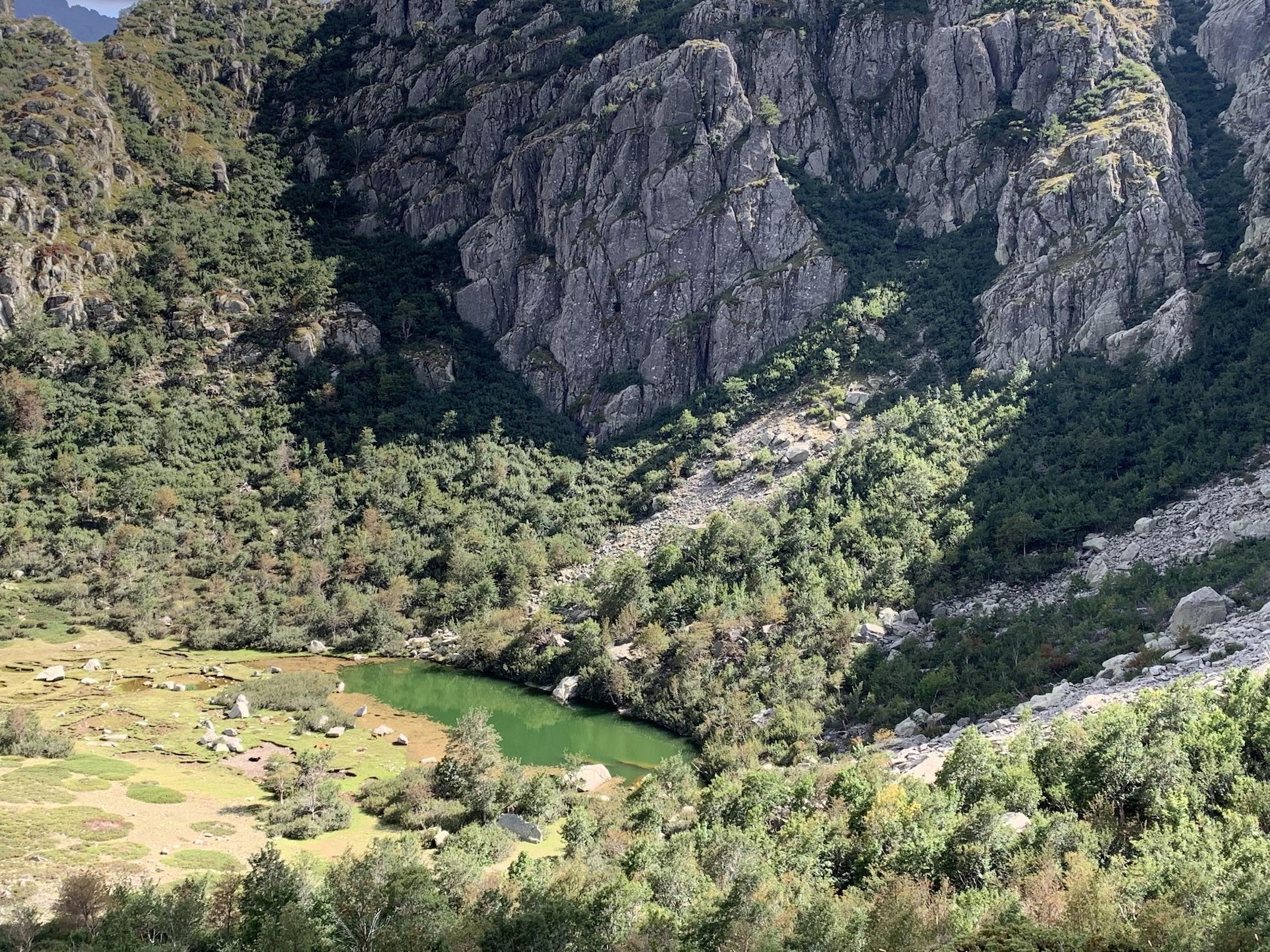 La photo du jour : U lavu di Ghjallicata piana dans la vallée du Manganellu