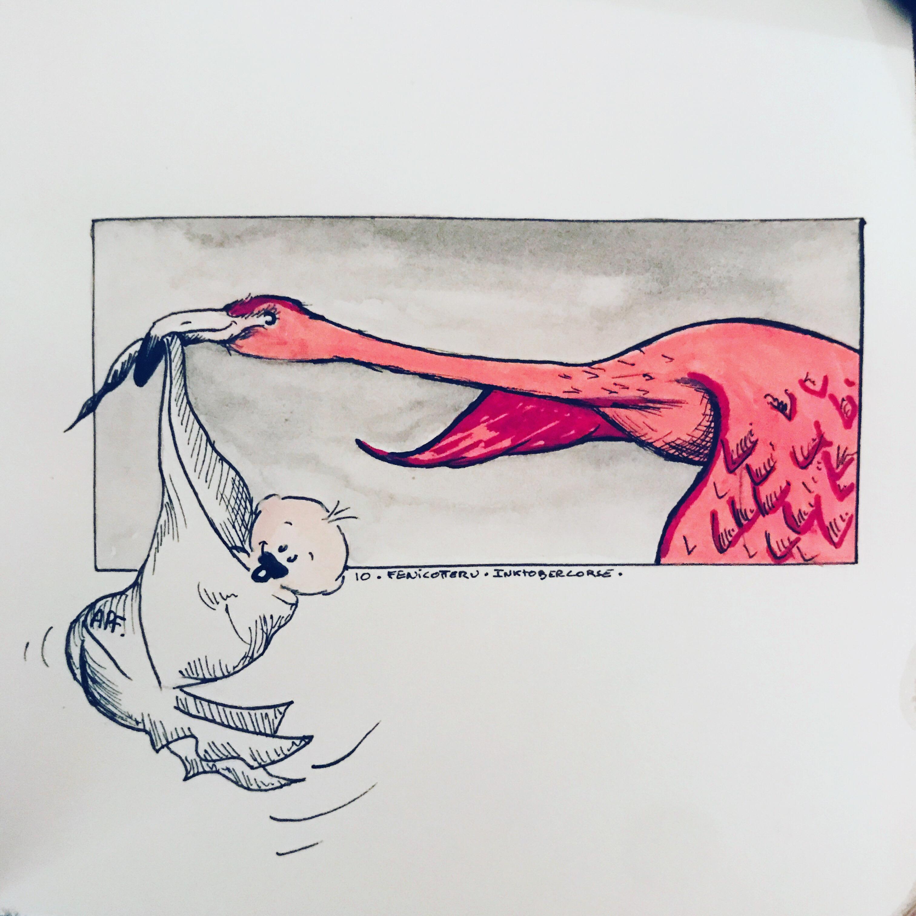 Inchjo'stobre, ghjornu dece : fenicotteru