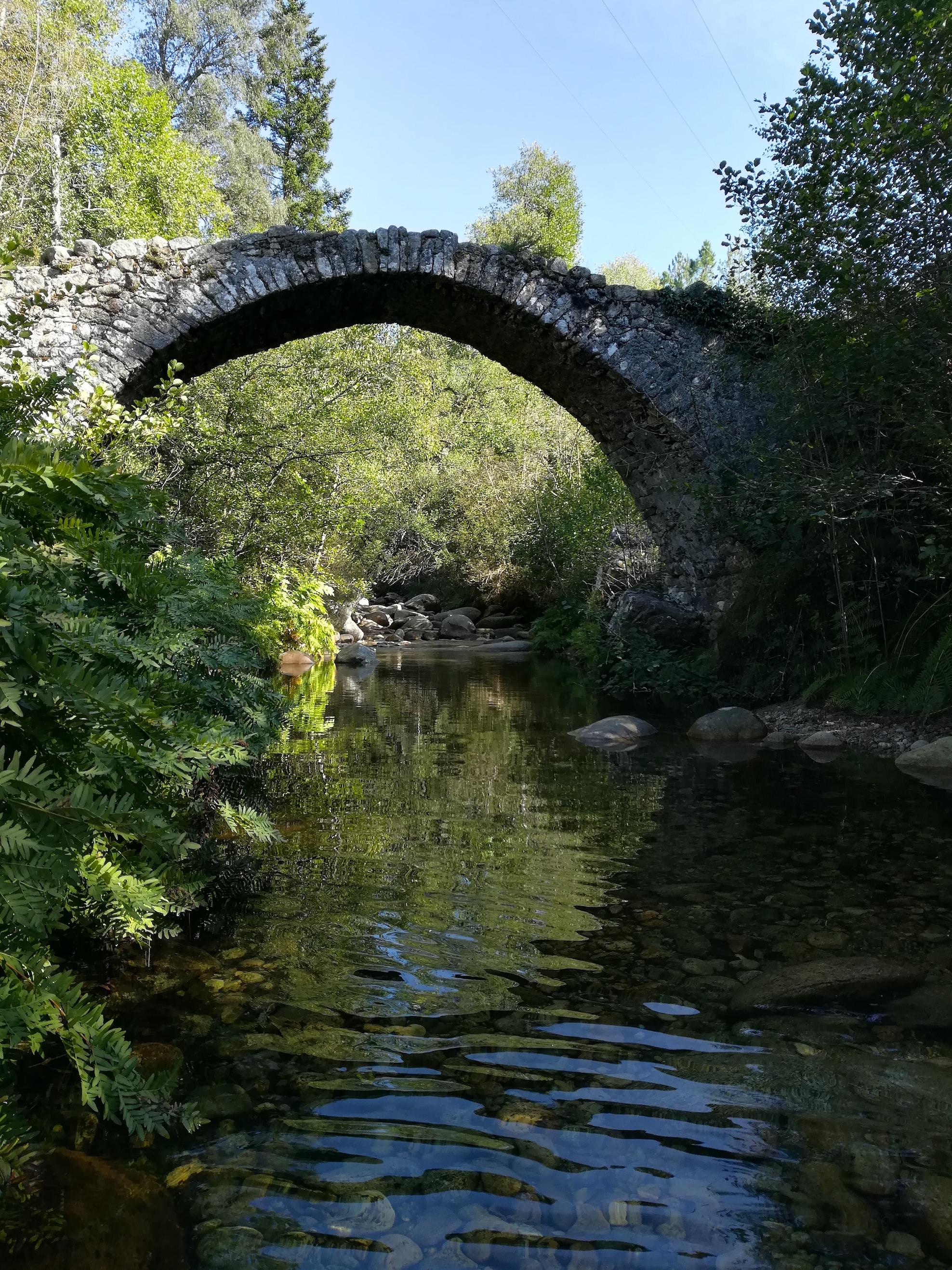La photo du jour : le pont génois de la forêt de Zipitoli