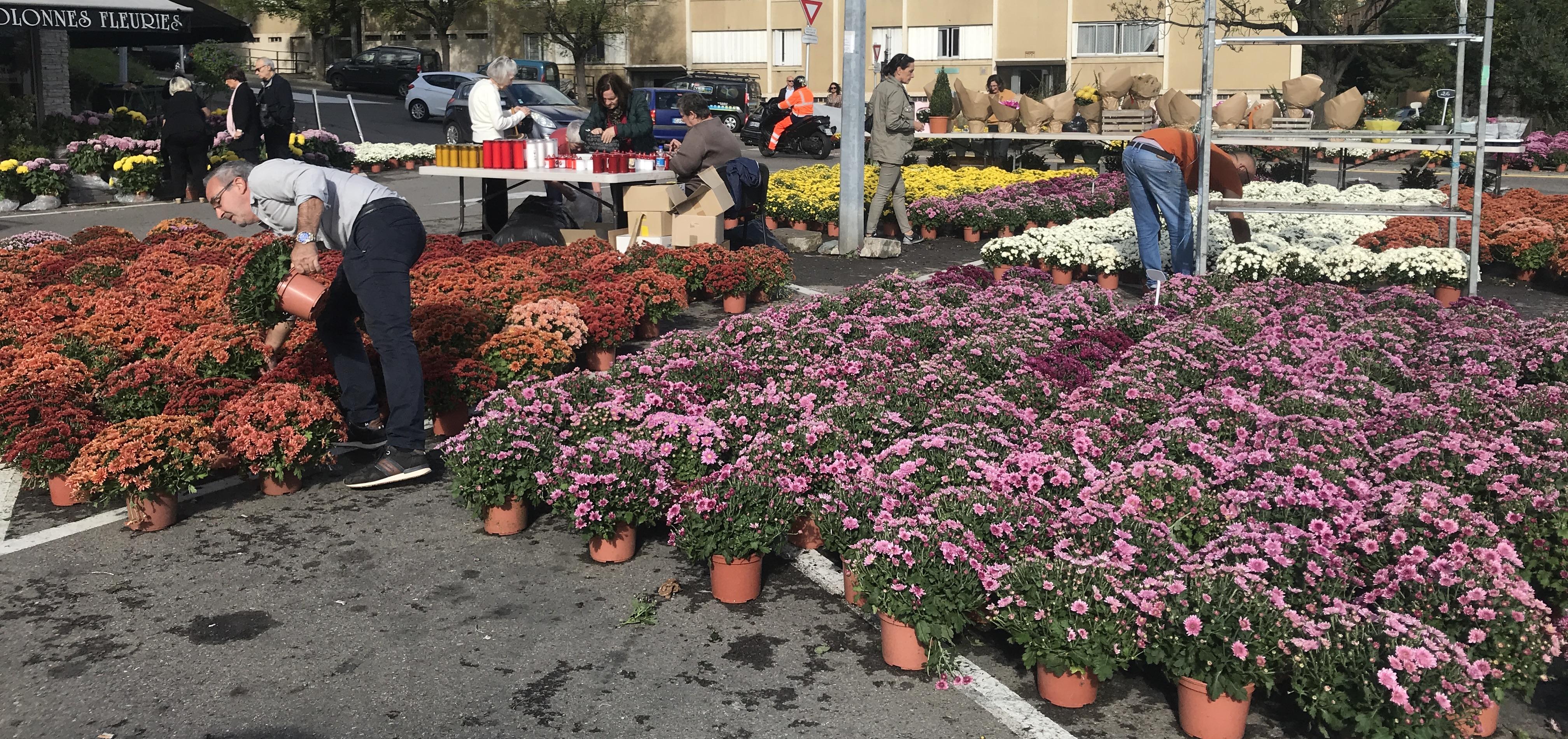 Le jour de la Toussaint, le chrysanthème est la fleur la plus vendue.