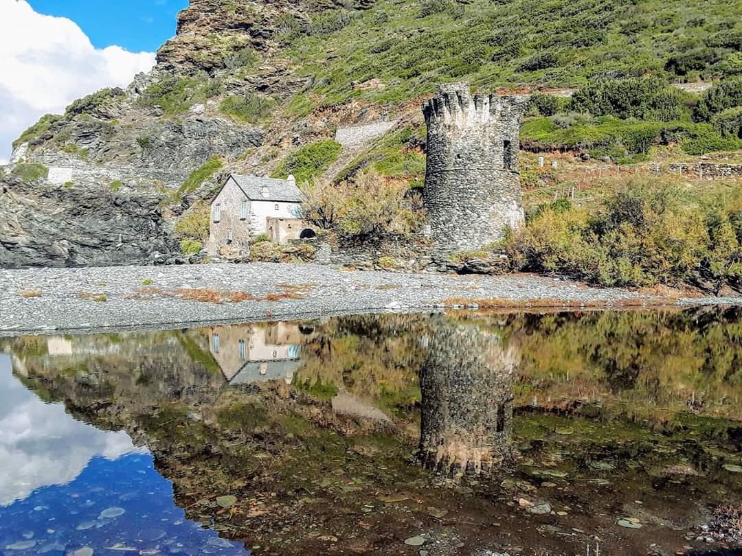 La photo du jour : la tour et la marine de Negru