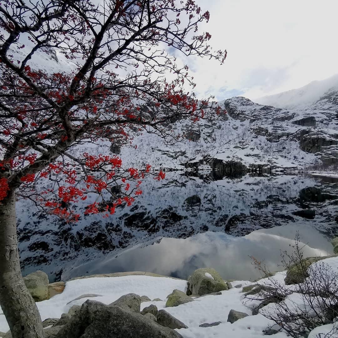 La photo du jour : Le lac de Melu entre dans l'hiver