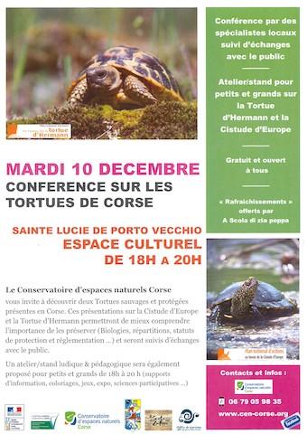 A la découverte des tortues à Sainte Lucie de Porto Vecchio