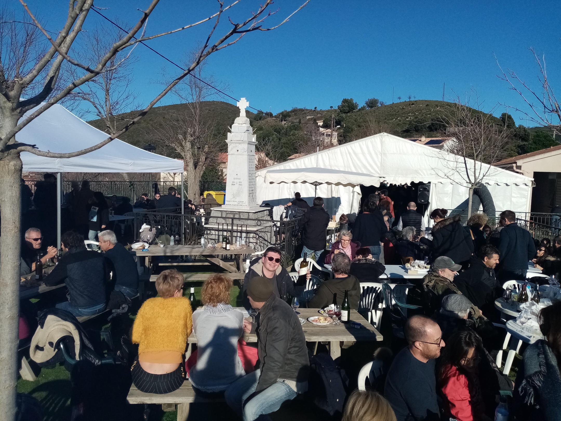 I scontri di u vinu in Erbaghjolu : un veru piacè
