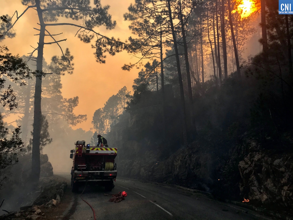 Le point sur l'incendie qui a détruit plus de 1000 hectares entre Quenza et Solaro