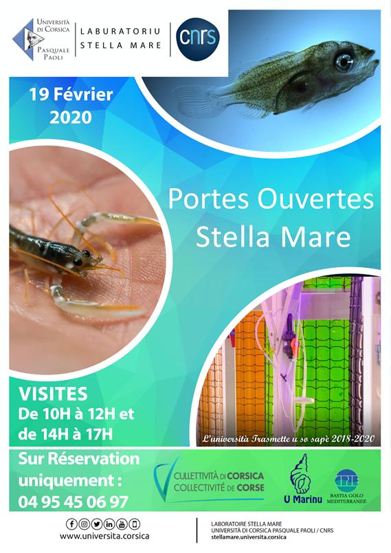Journée portes ouvertes à Stella Mare ce 19 février