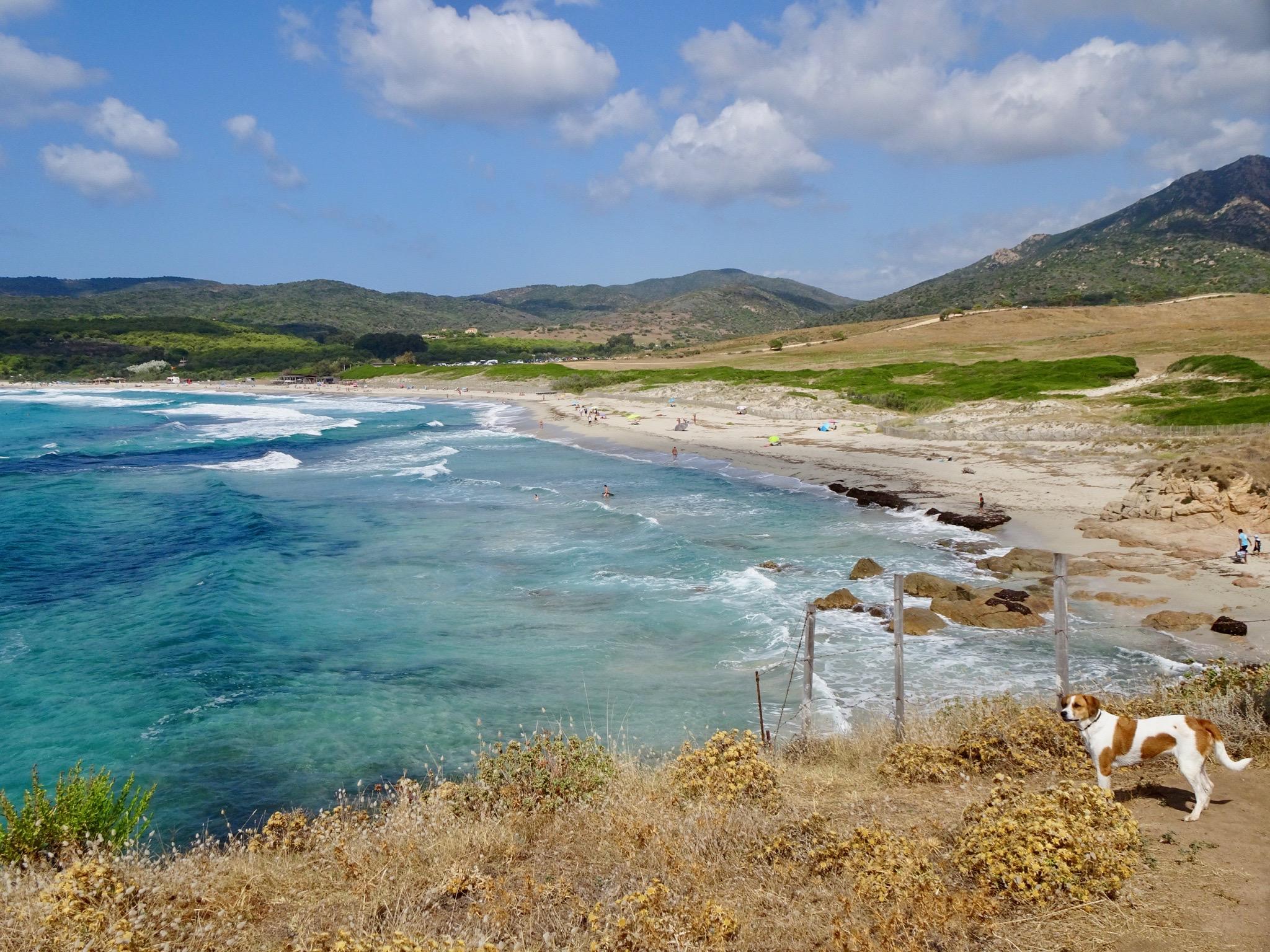 La plage de Capo di Fenu ( Olivier Canioni)