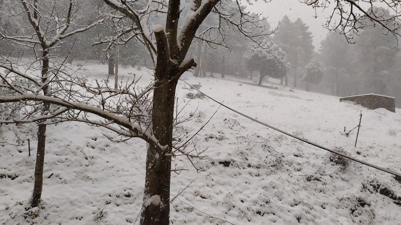 EN IMAGES - Météo : la neige au rendez-vous en Corse