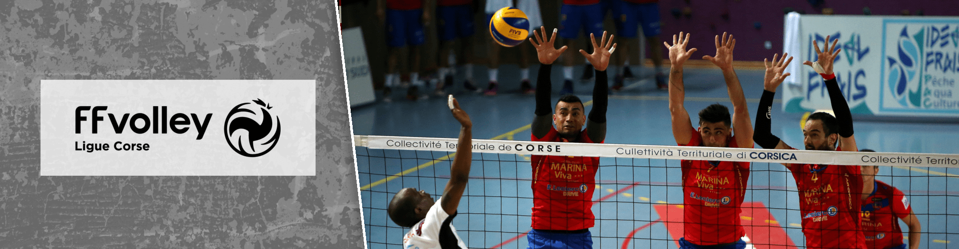 Coronavirus : saison terminée en Volley-ball