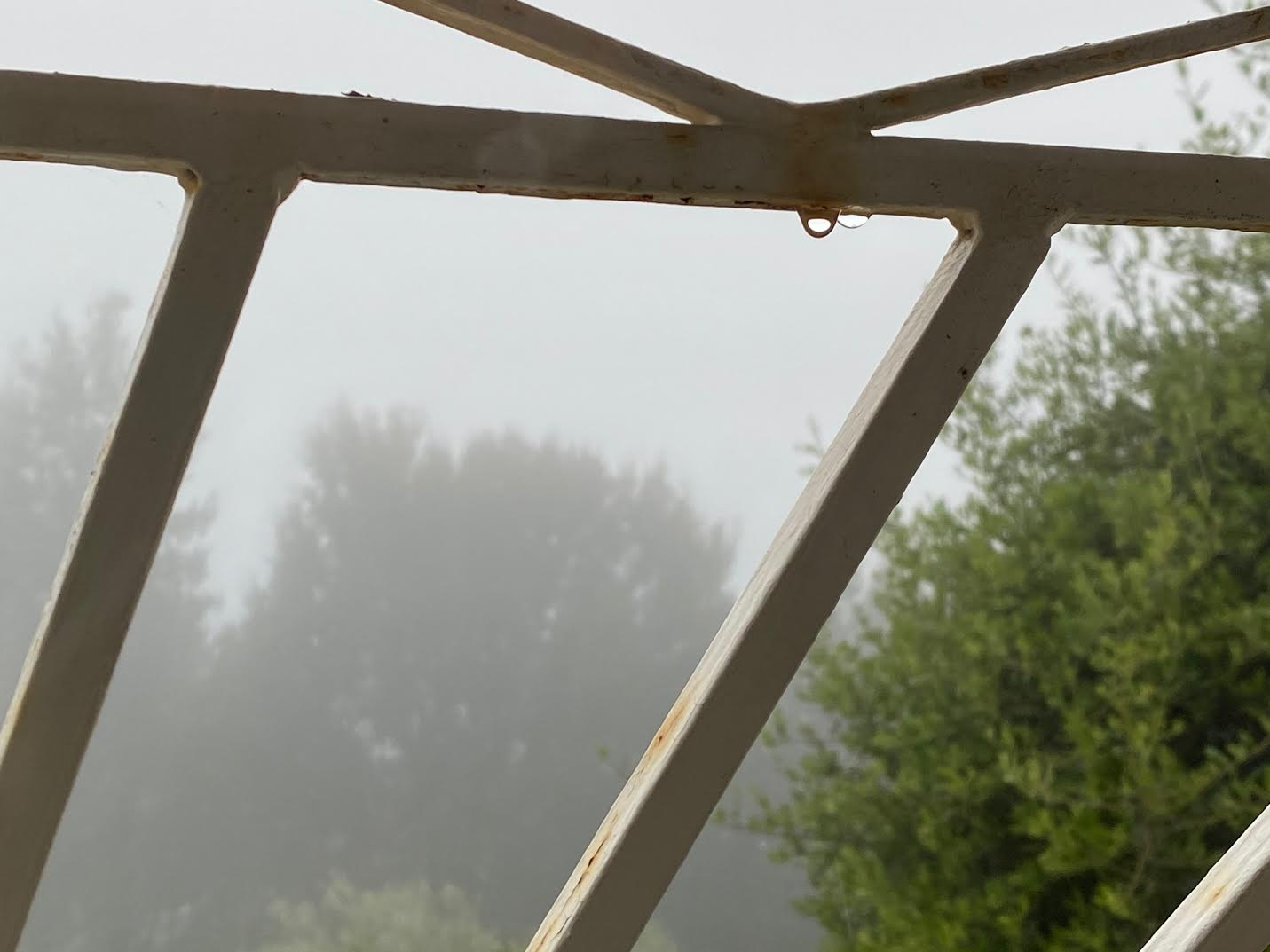 La campagne corse dans le brouillard
