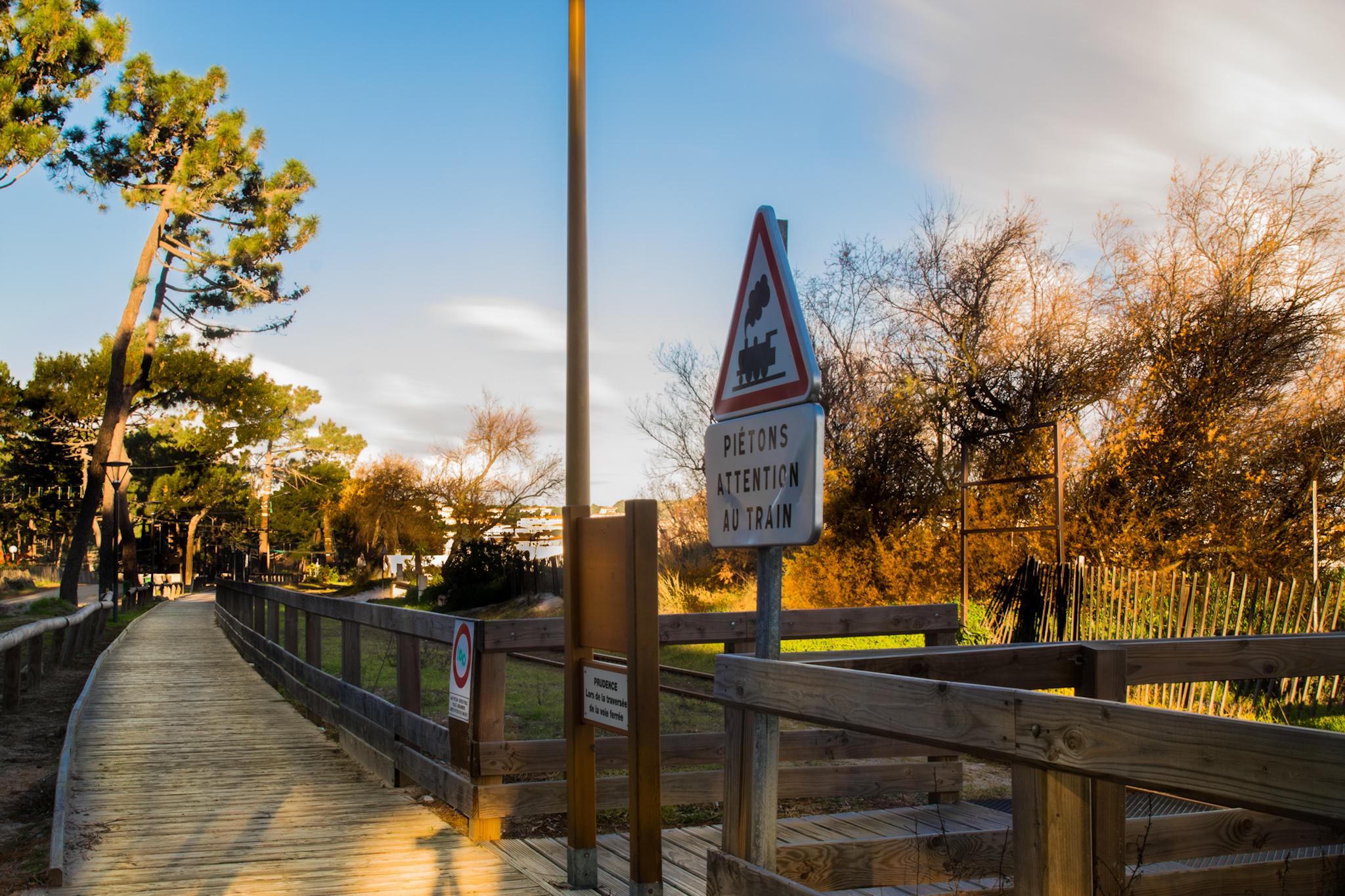 Confinement - A Calvi l'accès aux plages et à la pinède interdits jusqu'au 31 mai