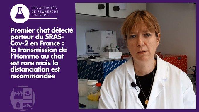 Sophie Le Poder, professeure de virologie à l'EnvA, co-auteure de la publication