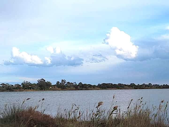 L'étang de Chjurlinu (Françoise Geronimi)