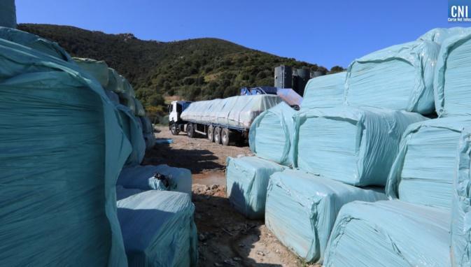 Tocc'à voi : Une Corse qui exporte ses déchets et qui importe pour le tout tourisme
