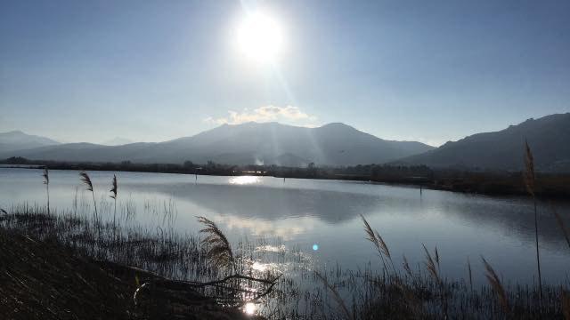 L'étang de Chjurlinu à Biguglia(Photo  Catherine Avisse)