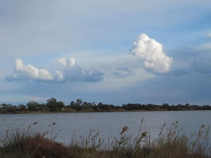Etang de Chjurlinu (Photo Françoise Geronimi)