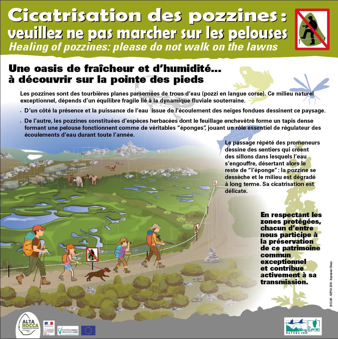 Au plateau du Coscionu : reconquête pastorale et préservation de la biodiversirté