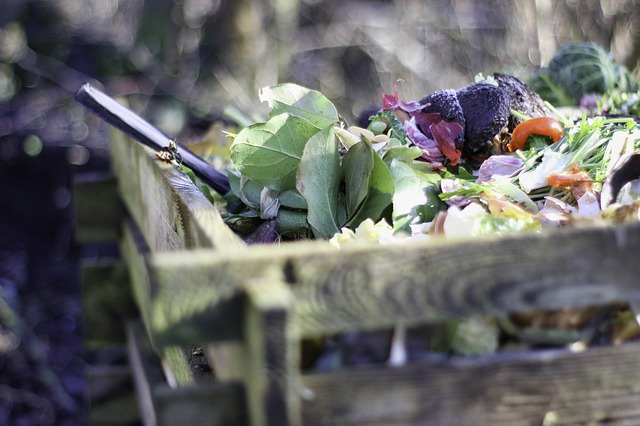 Zéro déchets : le Syvadec relance le compostage avec 80 distributions gratuites de composteurs