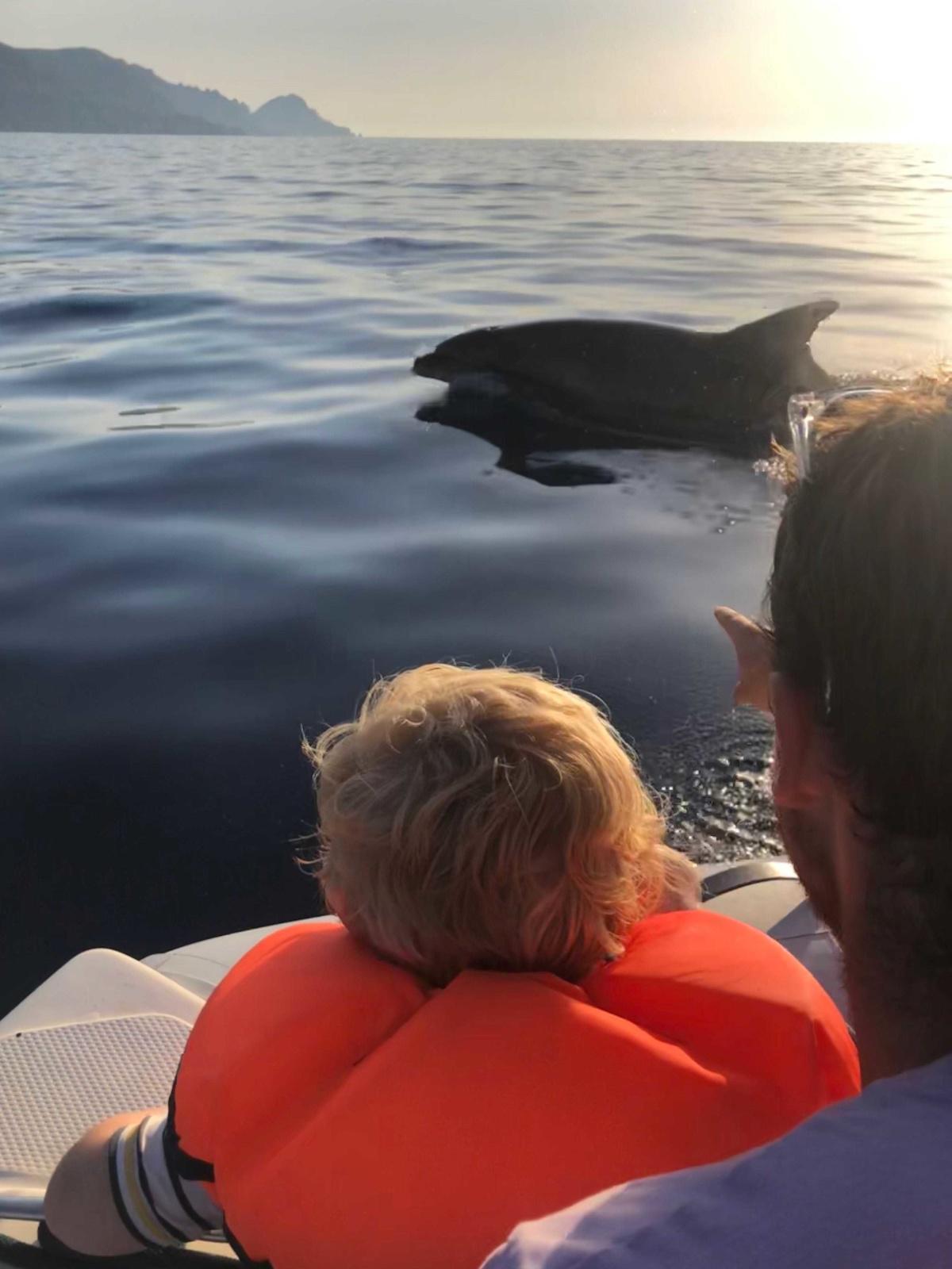 Porto : le dauphin et l'enfant