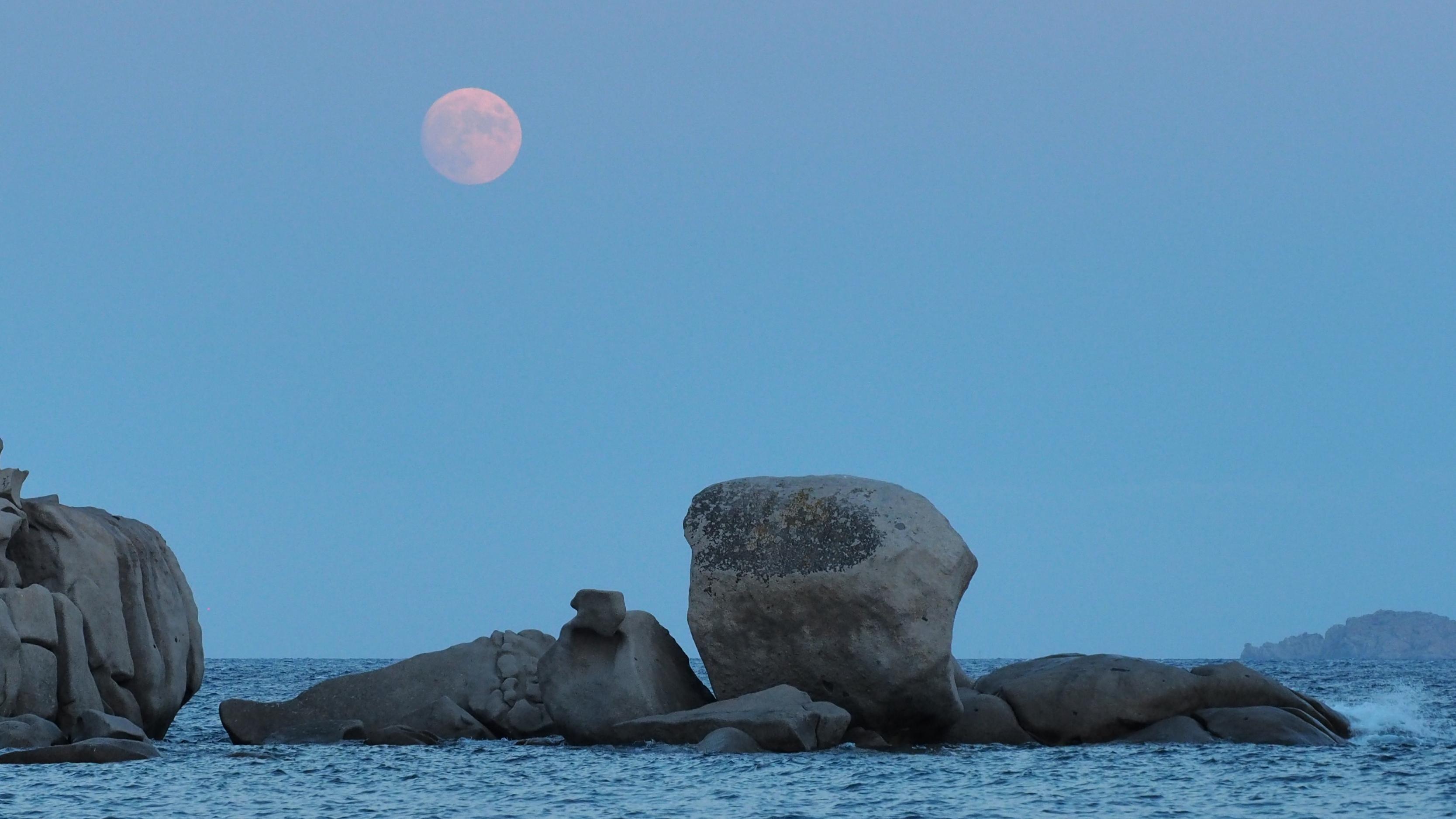 La photo du jour : pleine lune sur Palombaggia