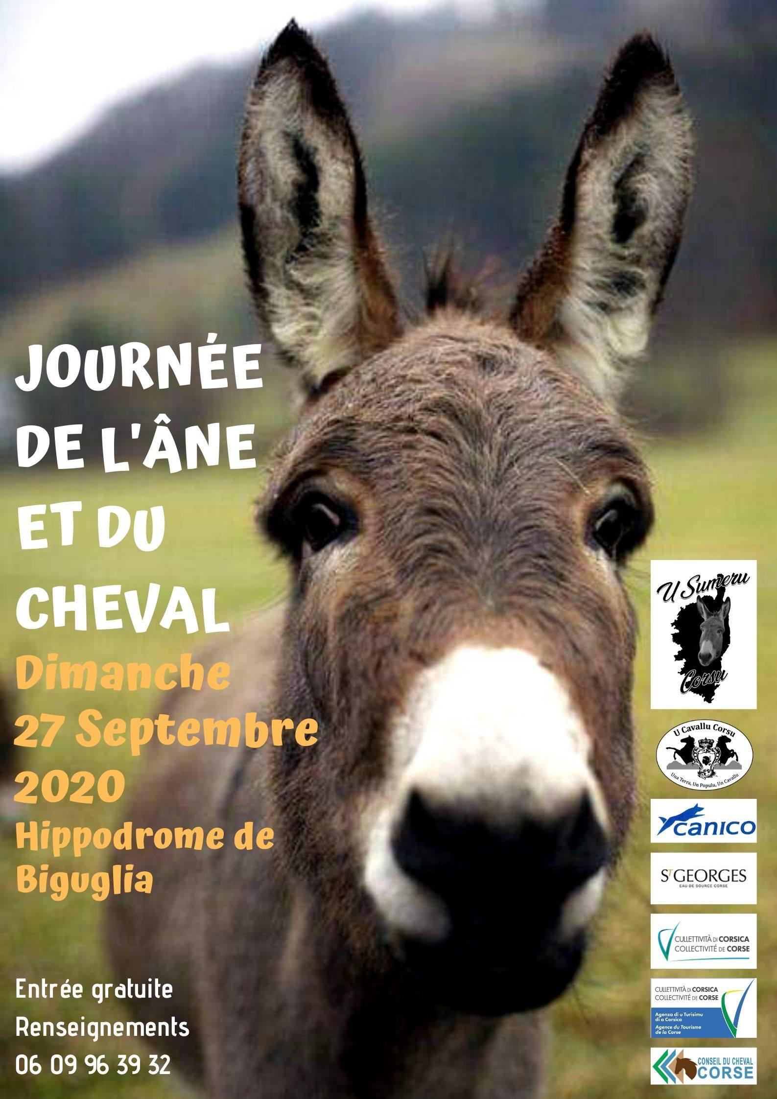 Biguglia : la Journée du cheval et de l'âne aura bien lieu