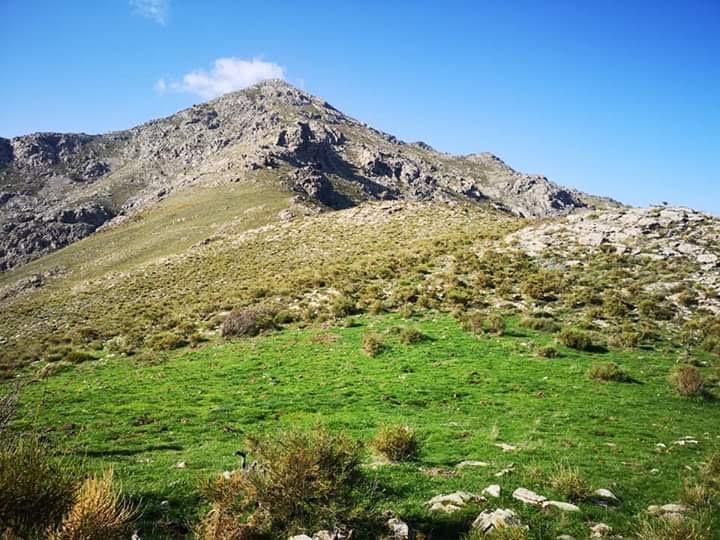 San Parteu in Ghjunsani, 1 680 m (Photo Françoise Geronimi)