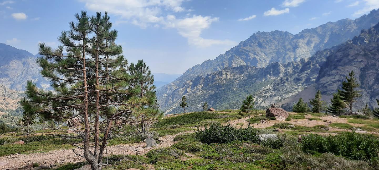 La photo du jour : entre Ascu et le Monte Cintu