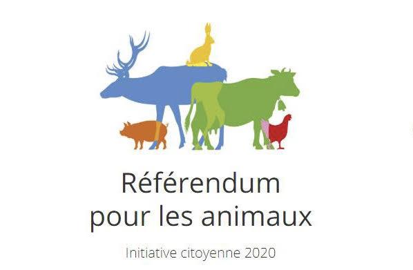 Référendum pour les animaux : les députés corses interpellés par Global Earth Keeper