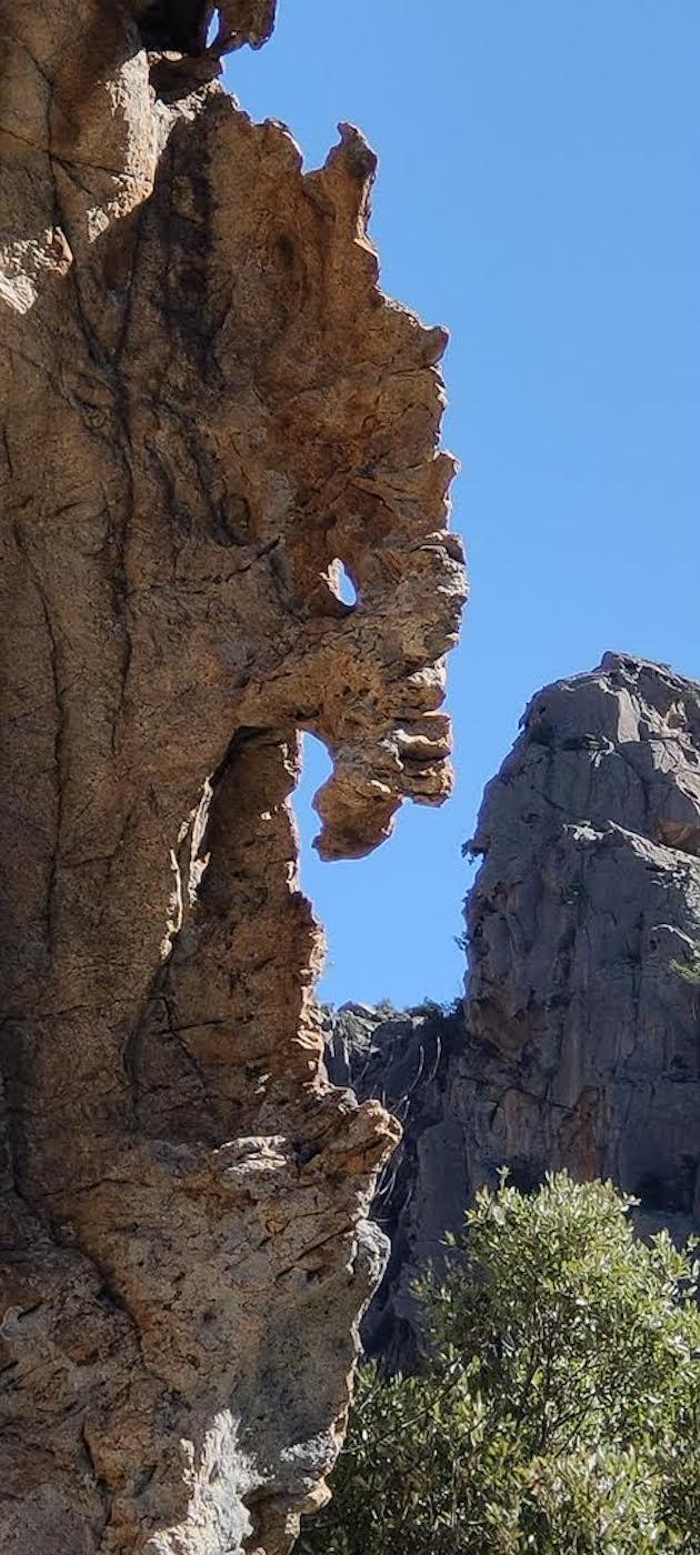 La photo du jour : monstre figé dans la roche