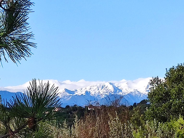 Les sommets de l'île vus d'Alistro il y a quelques semaines (Martina Reissmann)