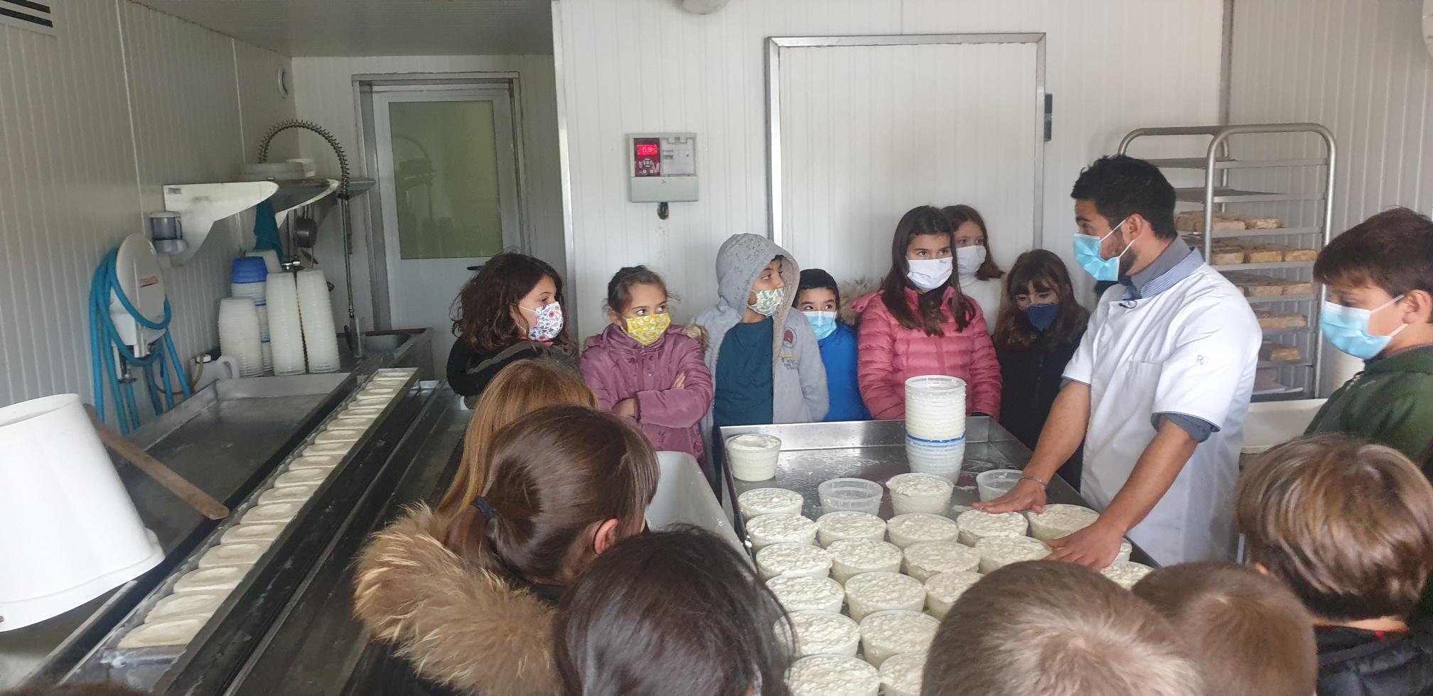 Les élèves d'Oletta découvrent les produits locaux.