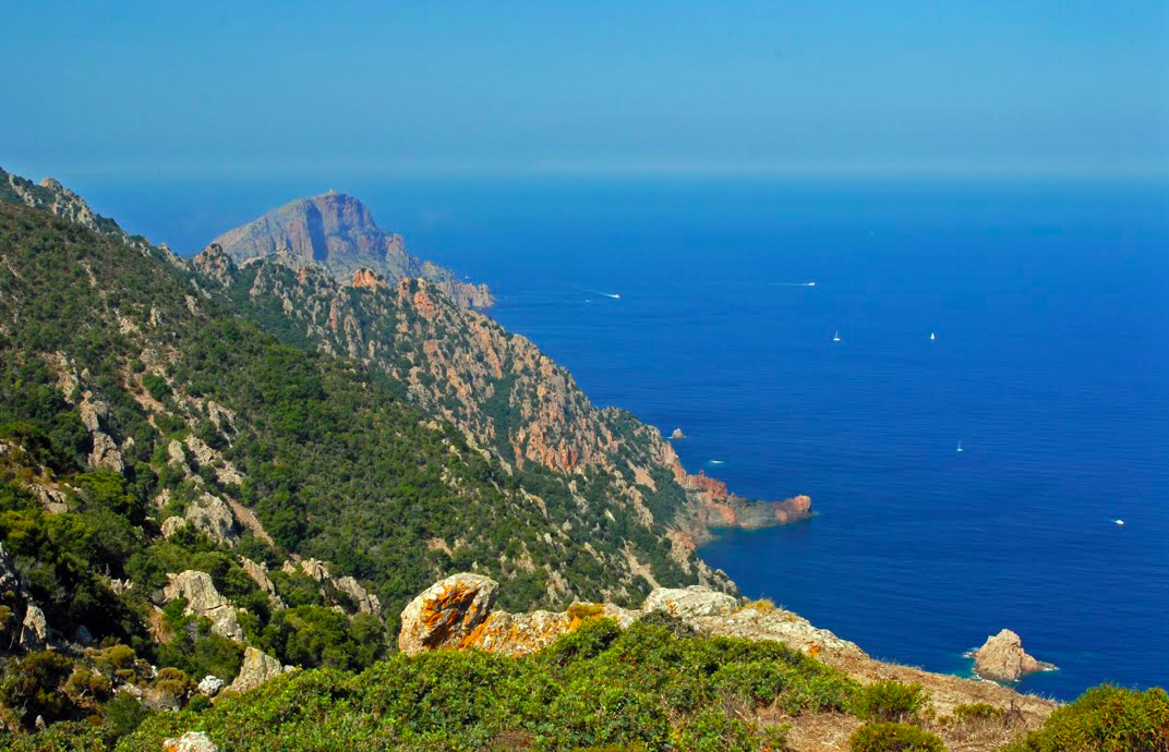 Photo Enrico Chiavacci