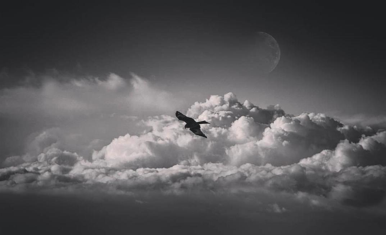 Photo Jean-Claude C.