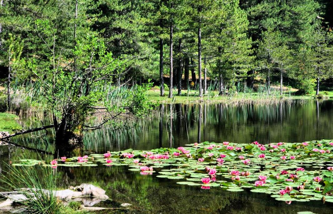Le lac de Creno  Hyacinthe Sambroni