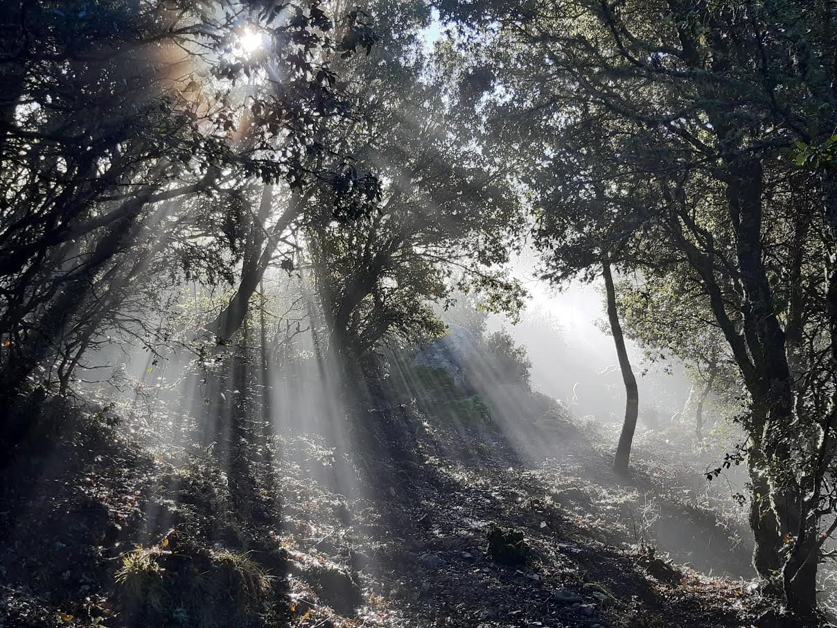 San Petru au petit matin (Photo Pascal Le Dervouet)