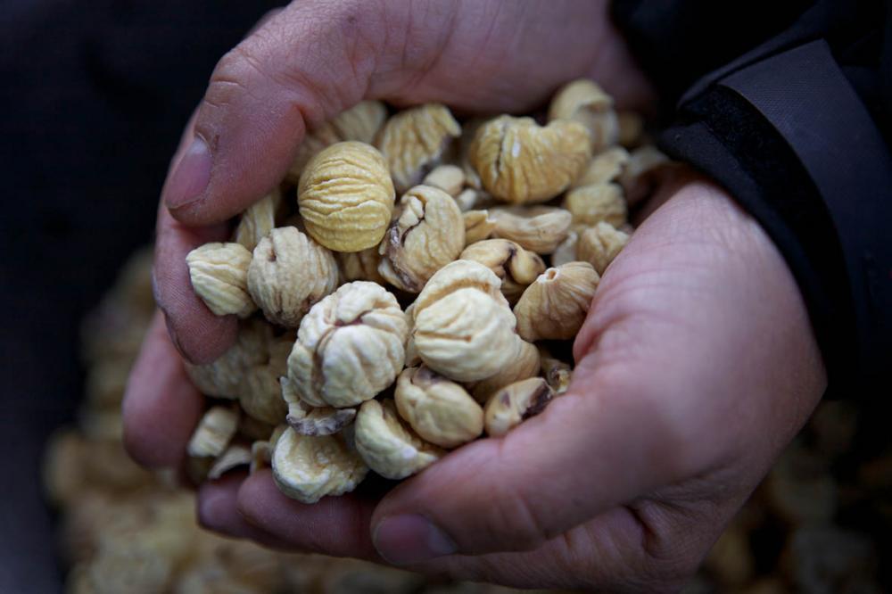 Les producteurs corses ne pourront pas mettre en avant la qualité de leur produits au salon de l'agriculture de Paris cette année. Crédits Photo : Office du Développement Agricole et Rural de Corse