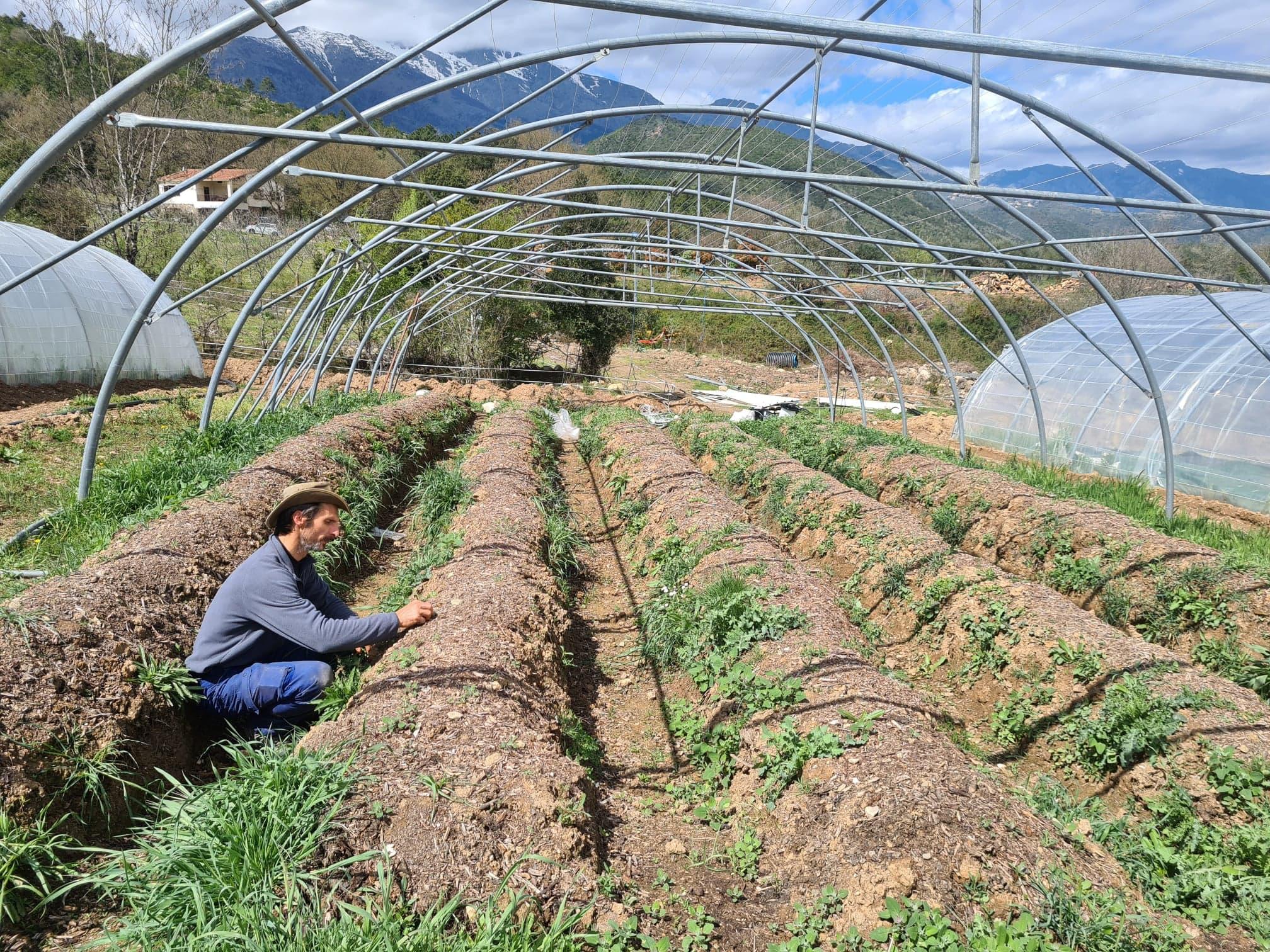 Exit les sillons à ras de terre et le mal de dos, la permaculture c'est aussi optimiser l'espace. Crédits Photo : Pierre-Manuel Pescetti